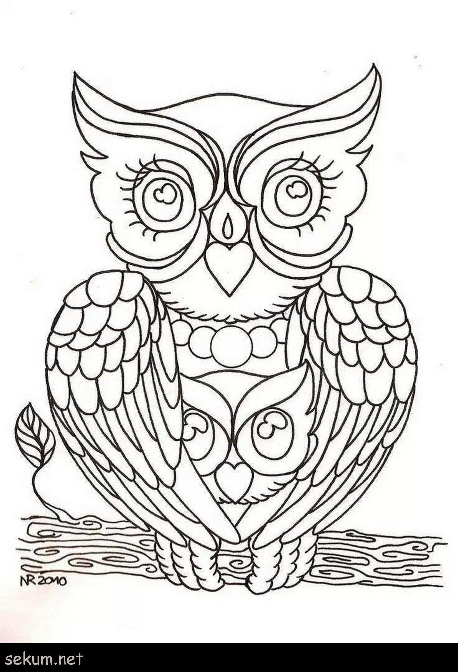 Owl Coloring Pages For Kids Coloring Pages Coloring Book Cute Owlloring For Kids Owl Coloring Pages Coloring Pages Coloring Books
