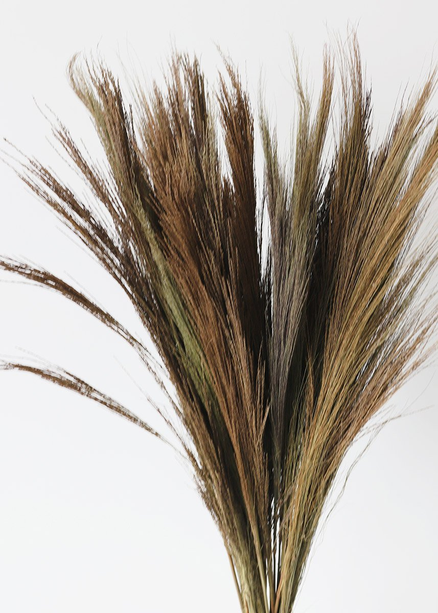 Natural Ornamental Tiger Grass Dried Grasses Afloral Com Tiger Grass Large Terracotta Pots Grass