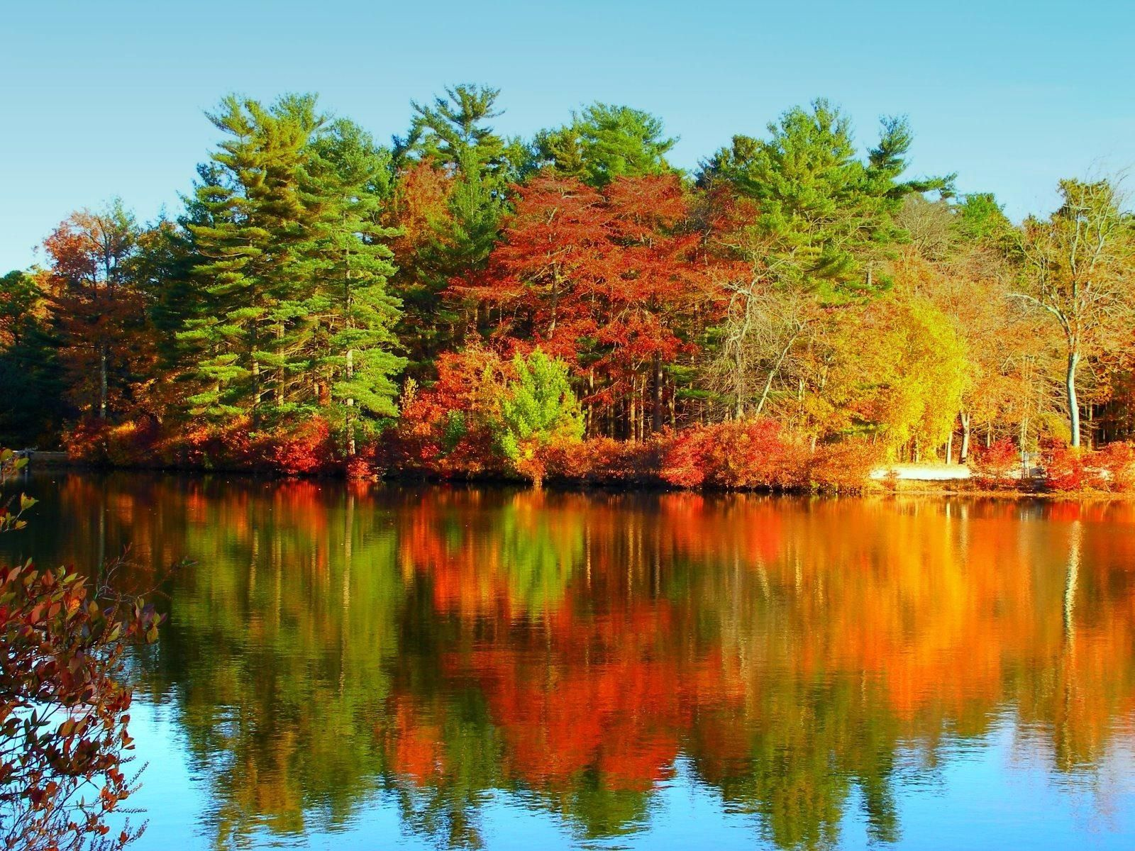 Autumn Lake Autumn Lake 1600 X 1200 Download Close