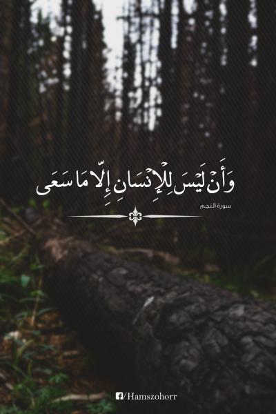 Dan Bahwasanya Seseorang Itu Tidak Akan Memperoleh Selain Apa Yang Telah Diusahakannya Qs Quran Quotes Love Quran Quotes Inspirational Quran Quotes Verses