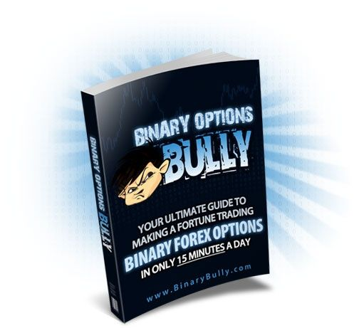 Download Binary Options Bully Guide Makes Up To  Forex Profit