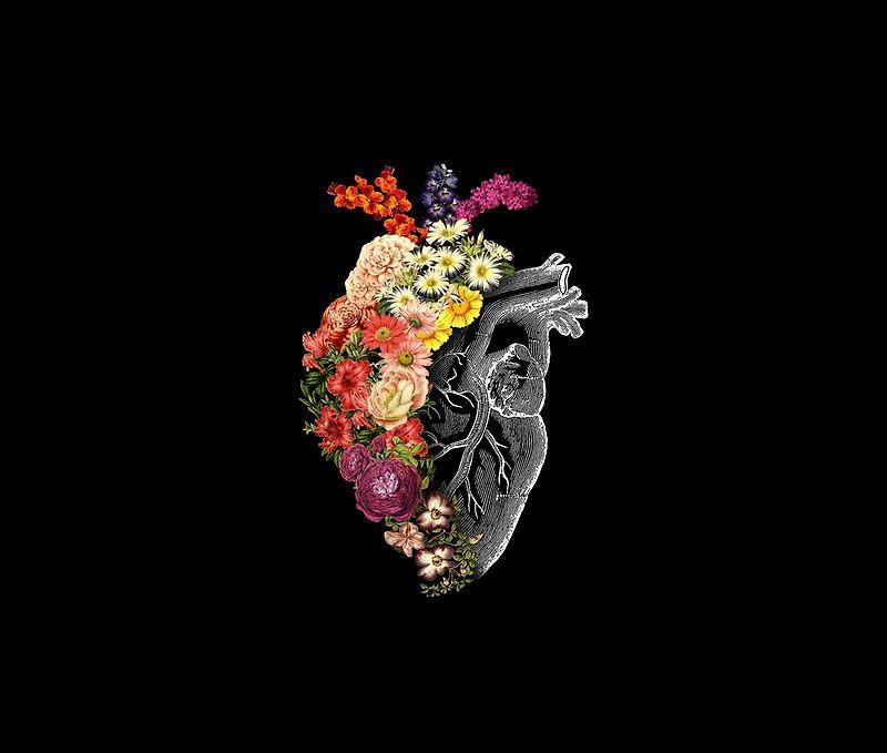 Flower Iphone Wallpaper: Flower Heart Spring