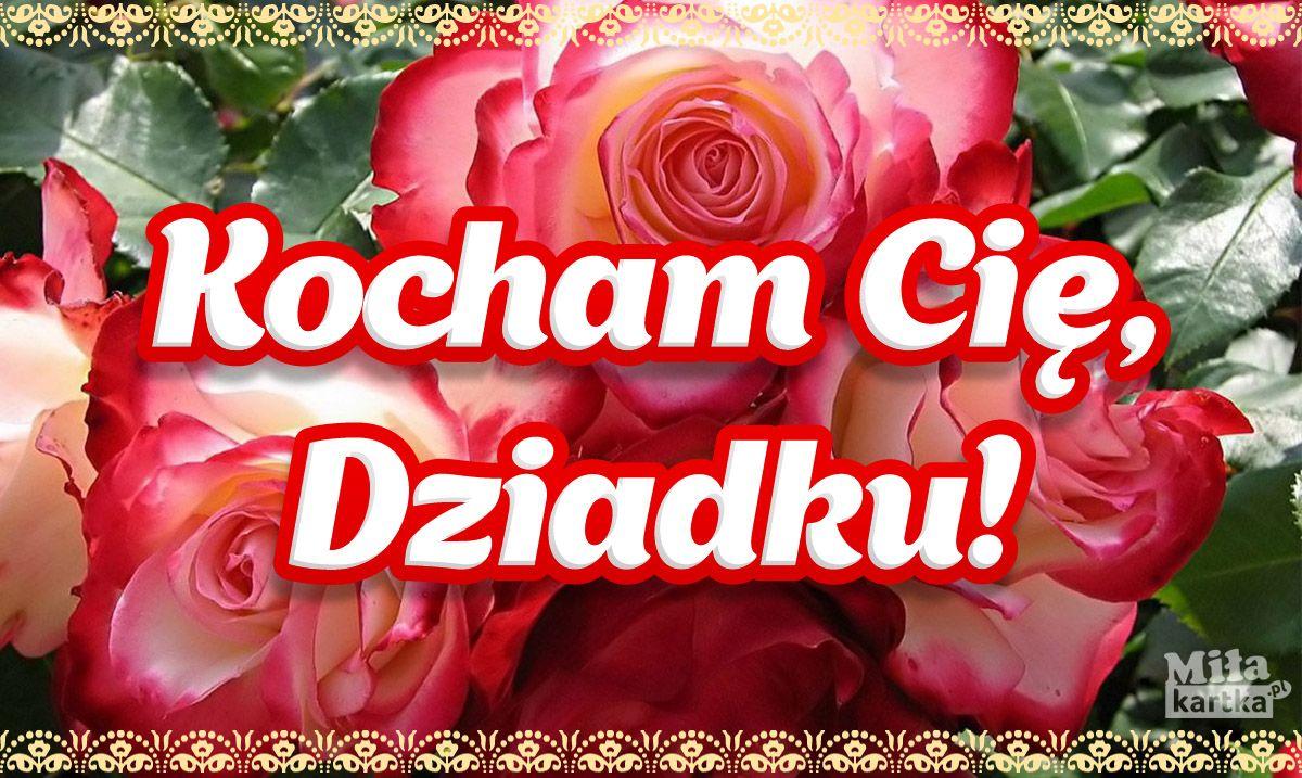 Kocham Cie Dziadku Babcia Dziadek Dziadkowie Rodzina Swieto Emeryt Polska Grandpa Grandma Wnuki Dzienbabci Kwiaty Kocham Vegetables Radish Food