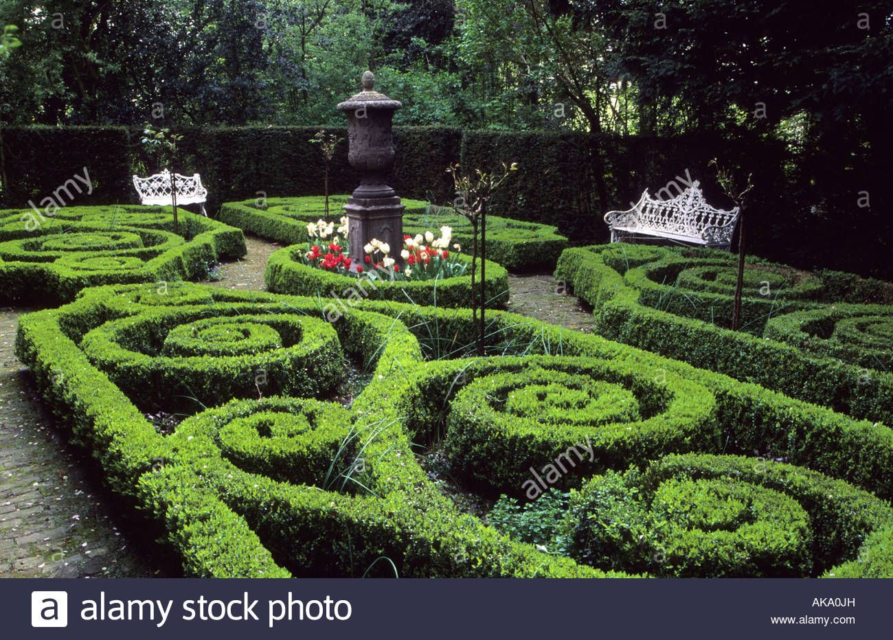 Image result for knot garden Boxwood garden, Hedges