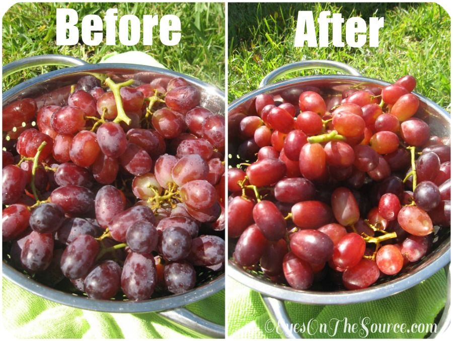 How To Clean Grapes Naturally Without Adding Other Chemicals Or Soaps Beforeafter Eyesonthesource Com Organic Recipes Food Hacks Real Food Recipes