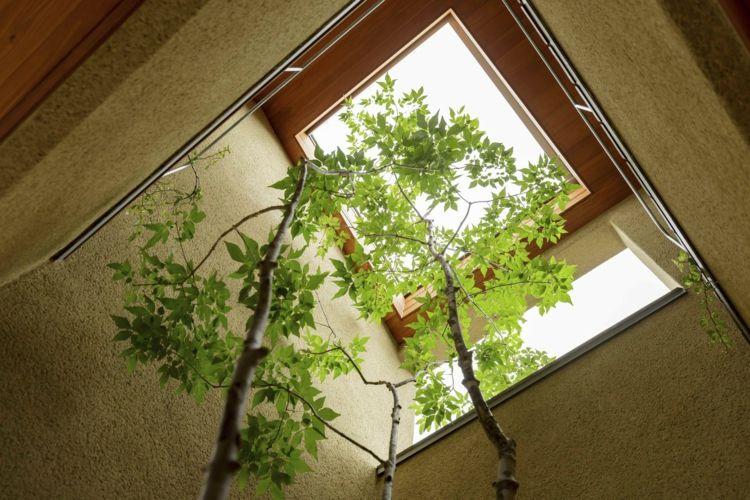 Japanische Architektur dachfenster japanische architektur baum innenbereich architektur