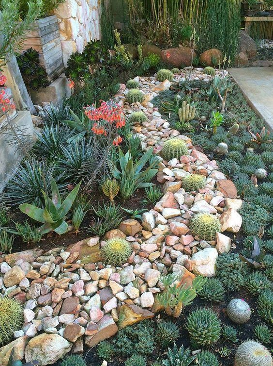 so beautiful succulent garden  succulent plants and rocks join together to create an amazing