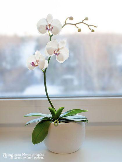 Купити або замовити Орхидея Фаленопсис в горшочке в інтернет-магазині на Ярмарку Майстрів. Небольшая веточка орхидеи фаленопсис из самозастывающей полимерной глины. Каждый цветок слеплен вручную и тонирован высококачественными масляными красками и акрилом. Такая веточка станет прекрасным украшением как для кухни, так и для гостиной. На заказ можно сделать любой цвет орхидеи. Так же можно сделать другое число цветов на стебле. В композиции может быть несколько веток. Внимание!
