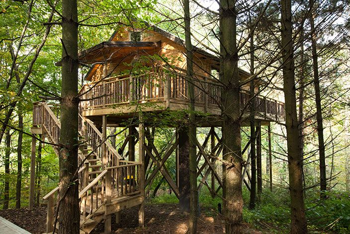 Merveilleux Wild Cherry Romantic Treehouse In Amish Country (Holmes County)...our Next  · Treehouse CabinsCherry TreeTree HousesOhio TreesBerlin ...