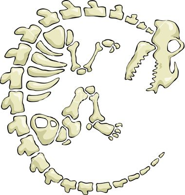 Dinosaur bones template google s gning skeleton for Printable dinosaur skeleton template