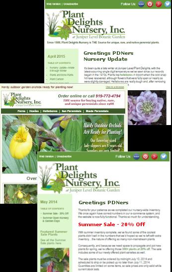Plant Delights Nursery An Online