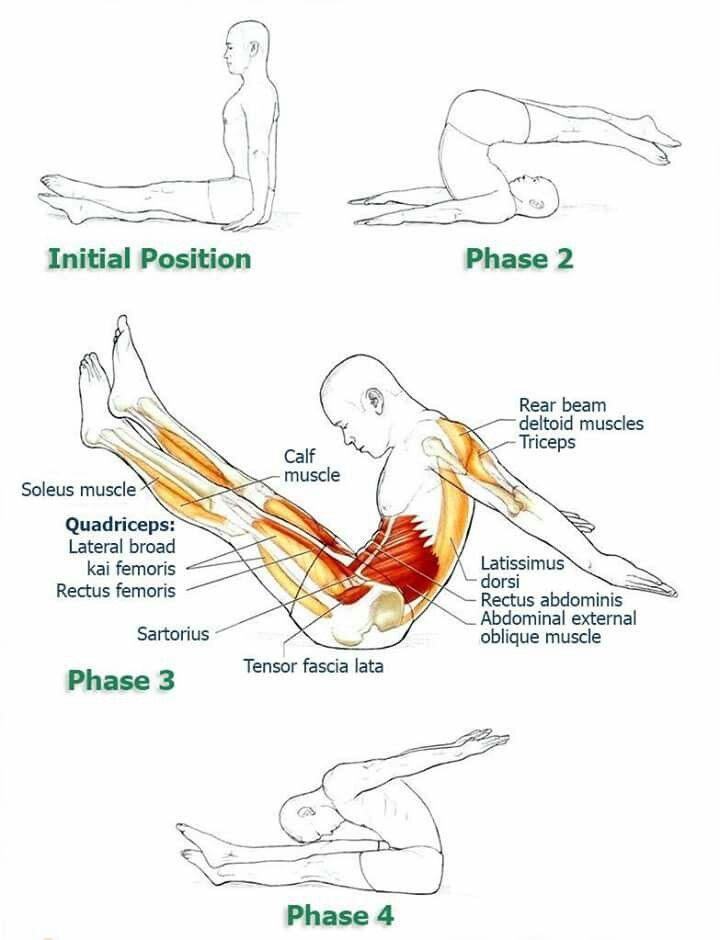 Pin de S. Gurunathan en workouts   Pinterest   Yoga, Anatomía y ...