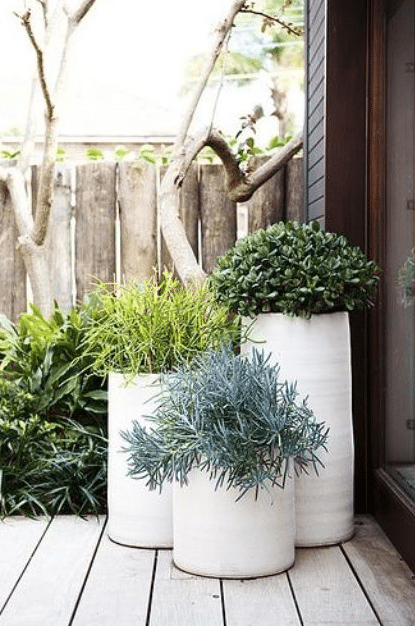 20 Beautiful Porch Planter Ideas • MW Designs -   19 plants Beautiful planters ideas