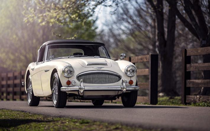 Lataa kuva Austin-Healey 3000, sportcars, british autot, retro autot, Austin-Healey