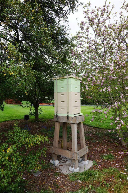 Photos: Visit to the White House Garden & Beehive | Apartment Therapy