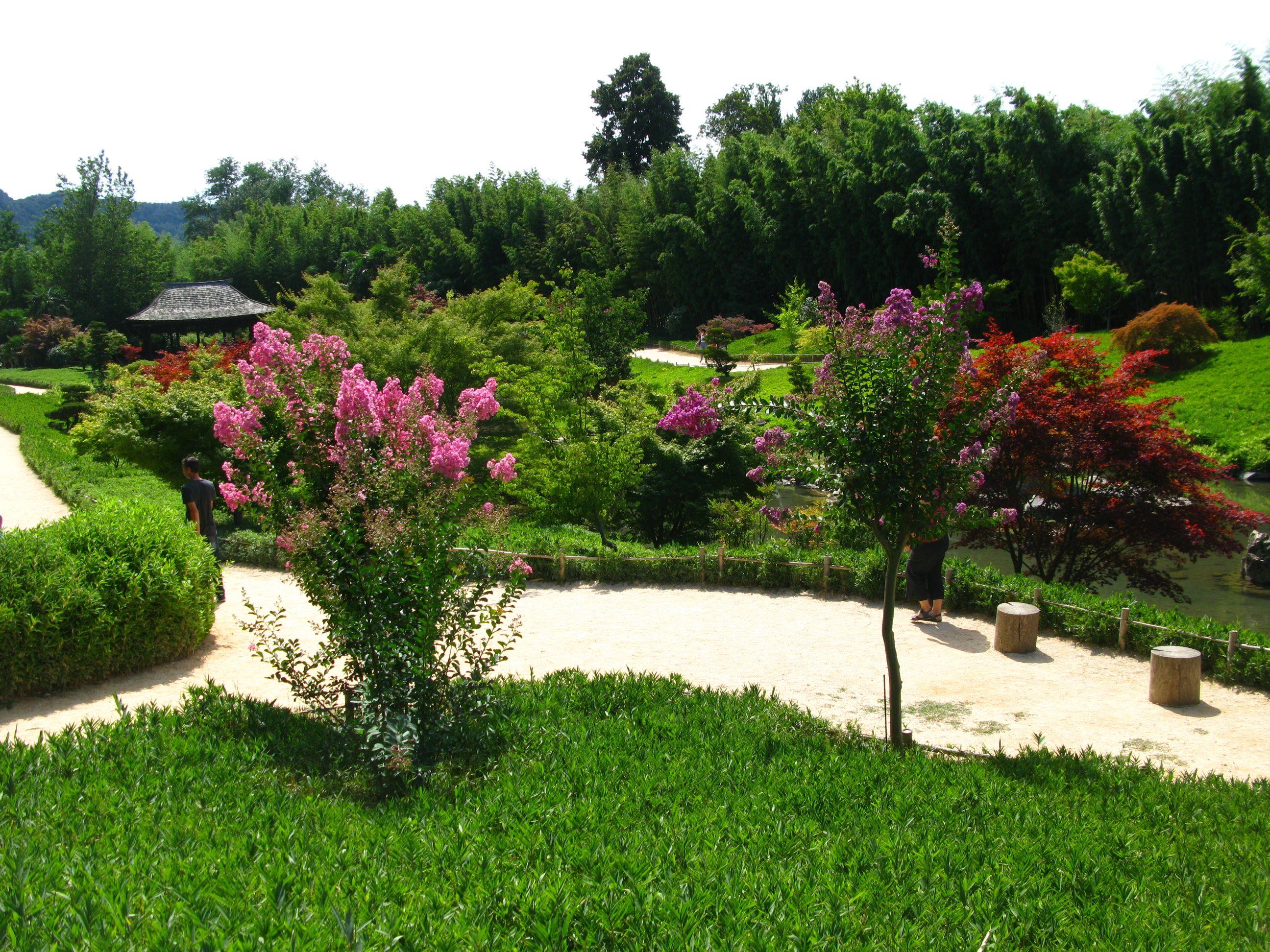 Le jardin japonais bambouseraie d 39 anduze pinterest for Pin jardin japonais