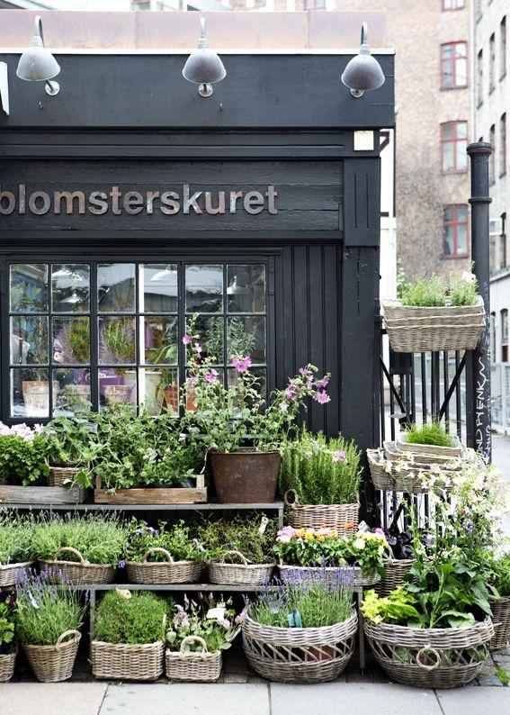 Kukkakaupan esillelaittoon paljon erilaisia pajukoreja / Blomsterskuret, Copenhagen