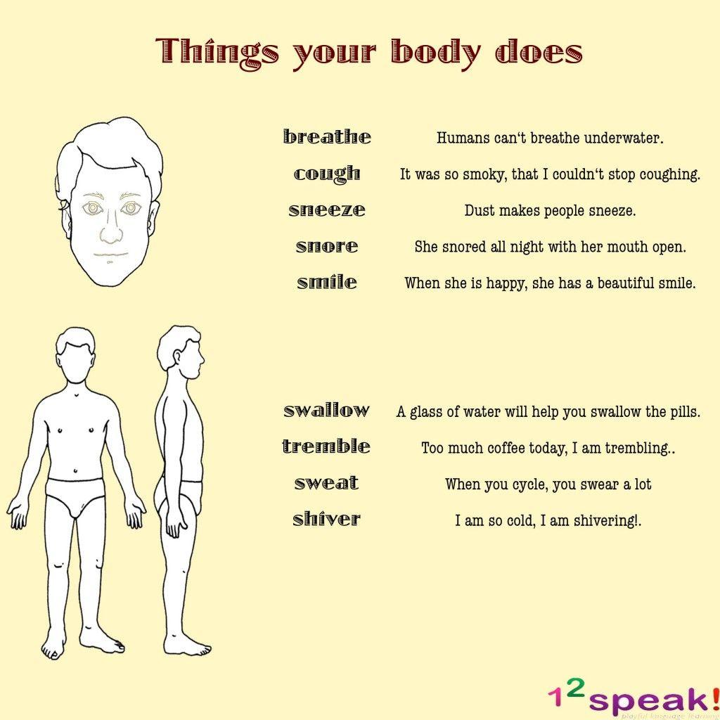 English Vocabulary Lesson On Human Body 12speak