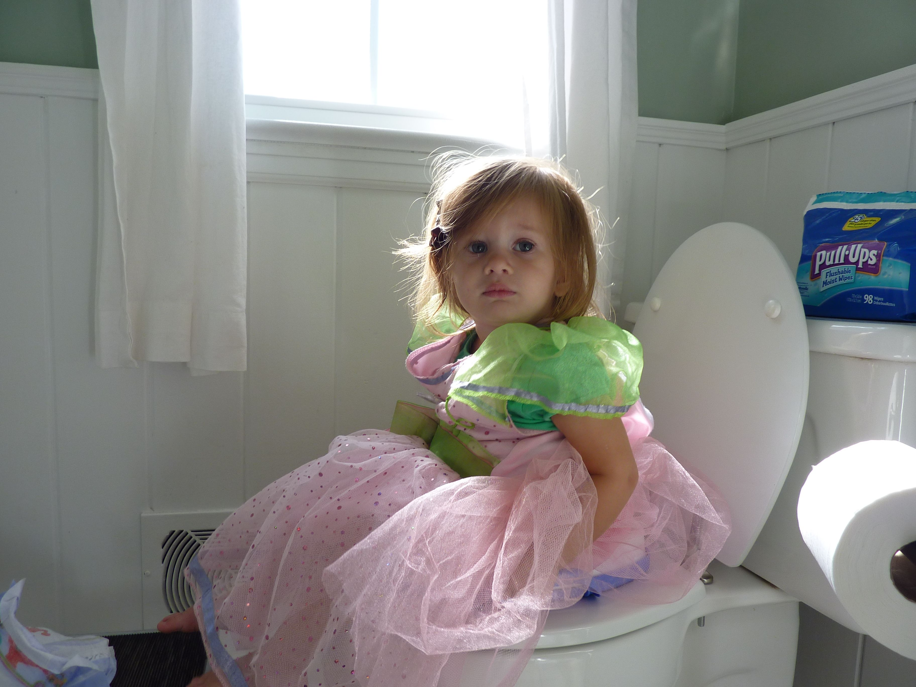 toddler girl pee How to easily potty train your toddler girl. Proven tips and advice.