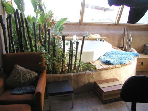 bath plant combo