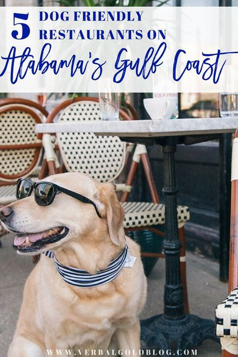 Pets Allowed! 5 Dog Friendly Restaurants On Alabama's Gulf