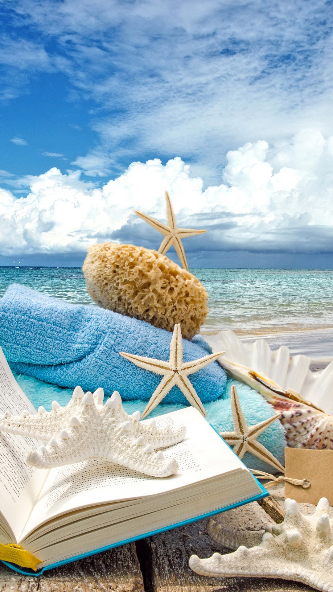 Christmas Samsung Galaxy S5 Wallpapers 113 Natures Beach And Sea