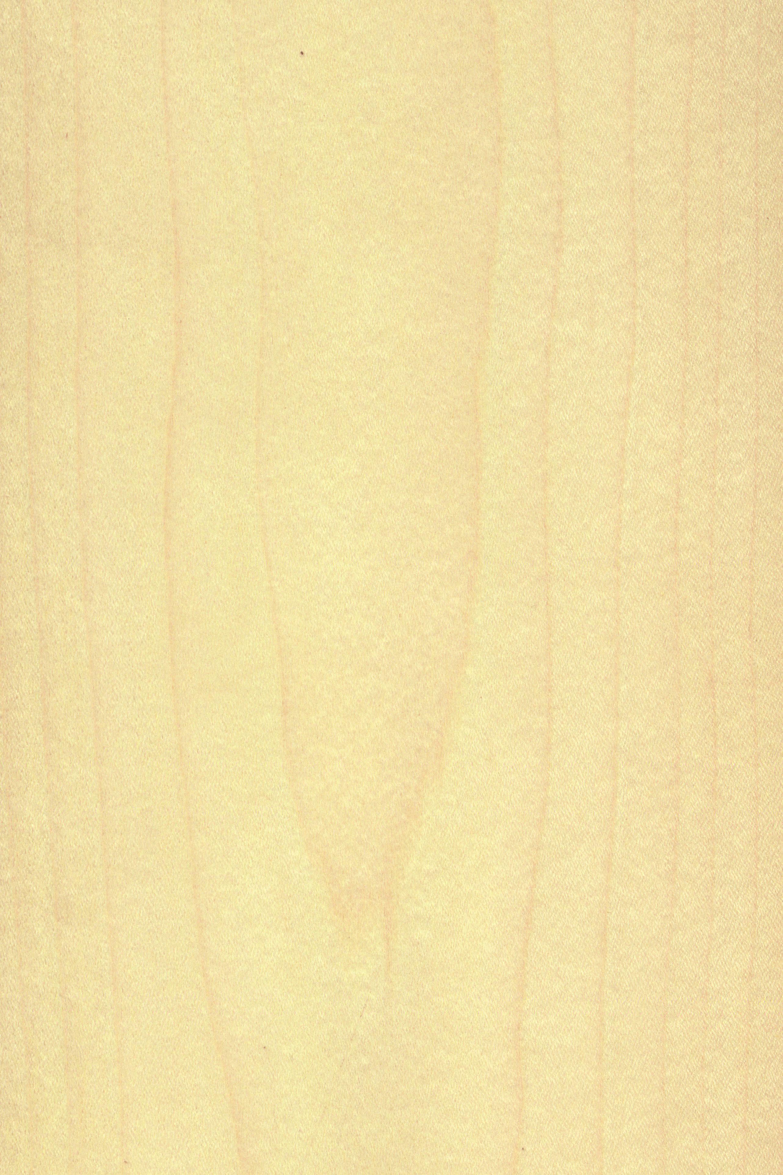 braun holz simple fliesen holzoptik weiss style kamin in design porzellan peronda foresta brand. Black Bedroom Furniture Sets. Home Design Ideas