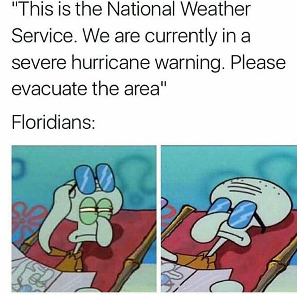 Pretty Much Hurricane Memes Florida Funny Funny