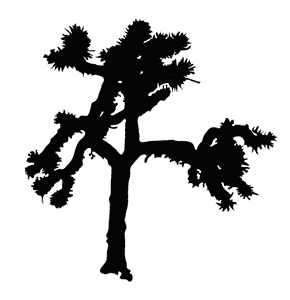 U2 Joshua Tree Logo Png Png Image 290x300 Pixels Joshua Tree Cover Art Tree Logos