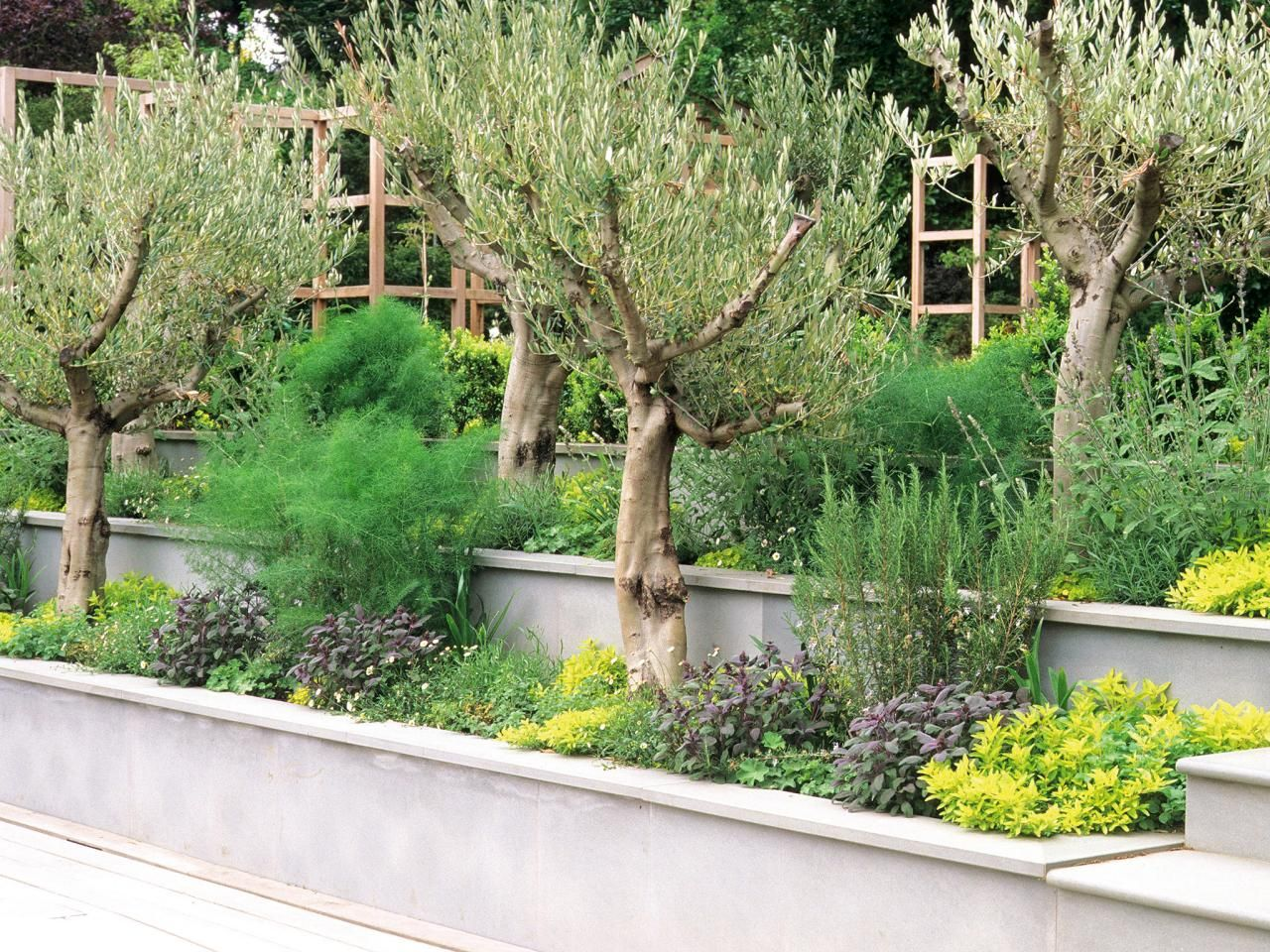 Mediterranean Style Gardens And Landscapes. Outdoor SpacesOutdoor  LivingOutdoor LifeSmooth ConcreteTerraced ...