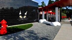 Best Friends Pet Care Walt Disney World Resort Pet Resort Luxury Pet Best Friends Pets