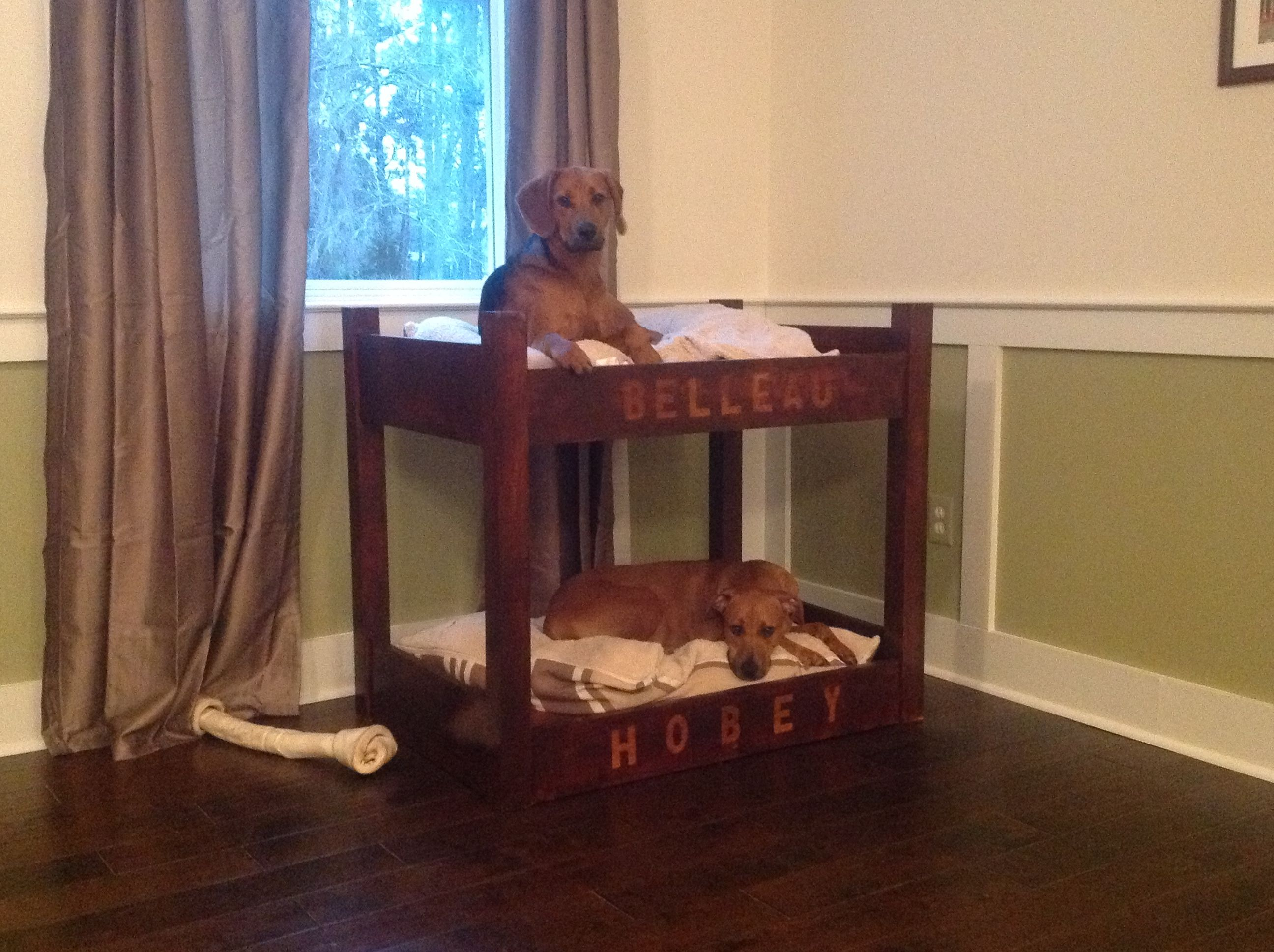 Dog bunk bed my husband made for Christmas Saw this on my board