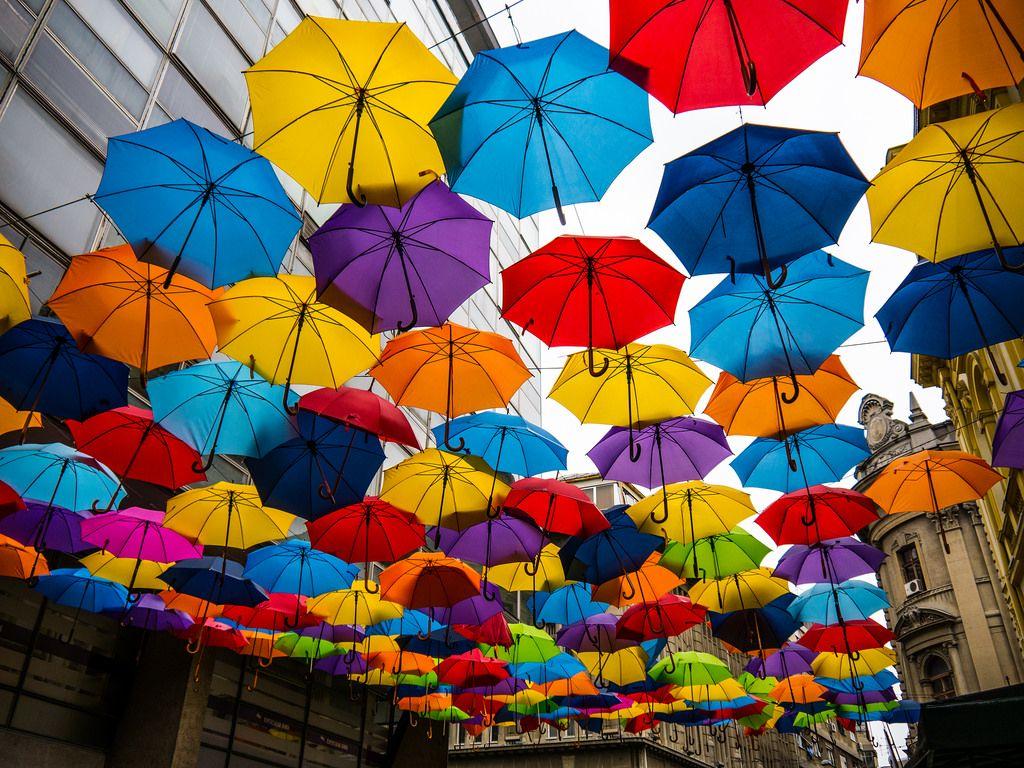 Umbrella Hq Umbrella Street Belgrade Serbia Umbrella