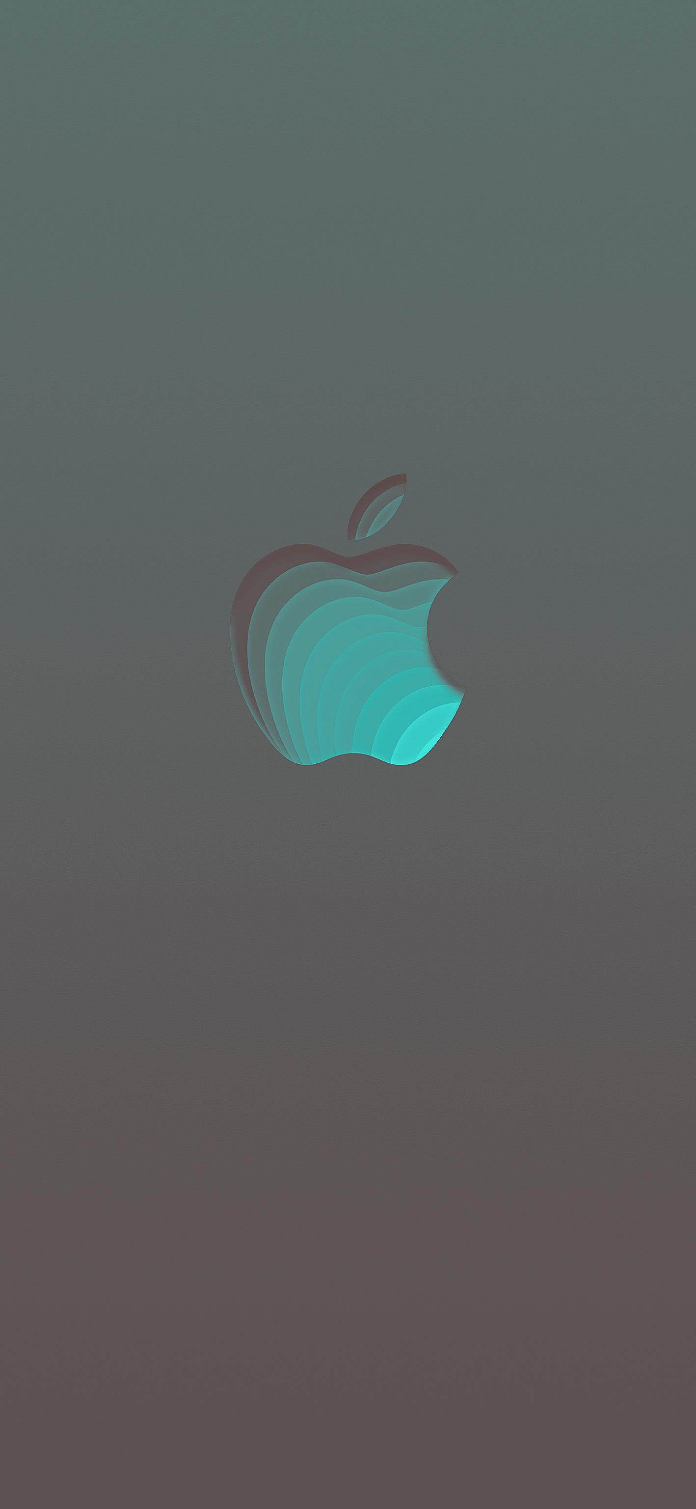 Ios13 Iphonewallpaper Apple Logo Colorful Darkmode Apple Iphone Wallpaper Hd Apple Logo Wallpaper Iphone Apple Wallpaper Iphone