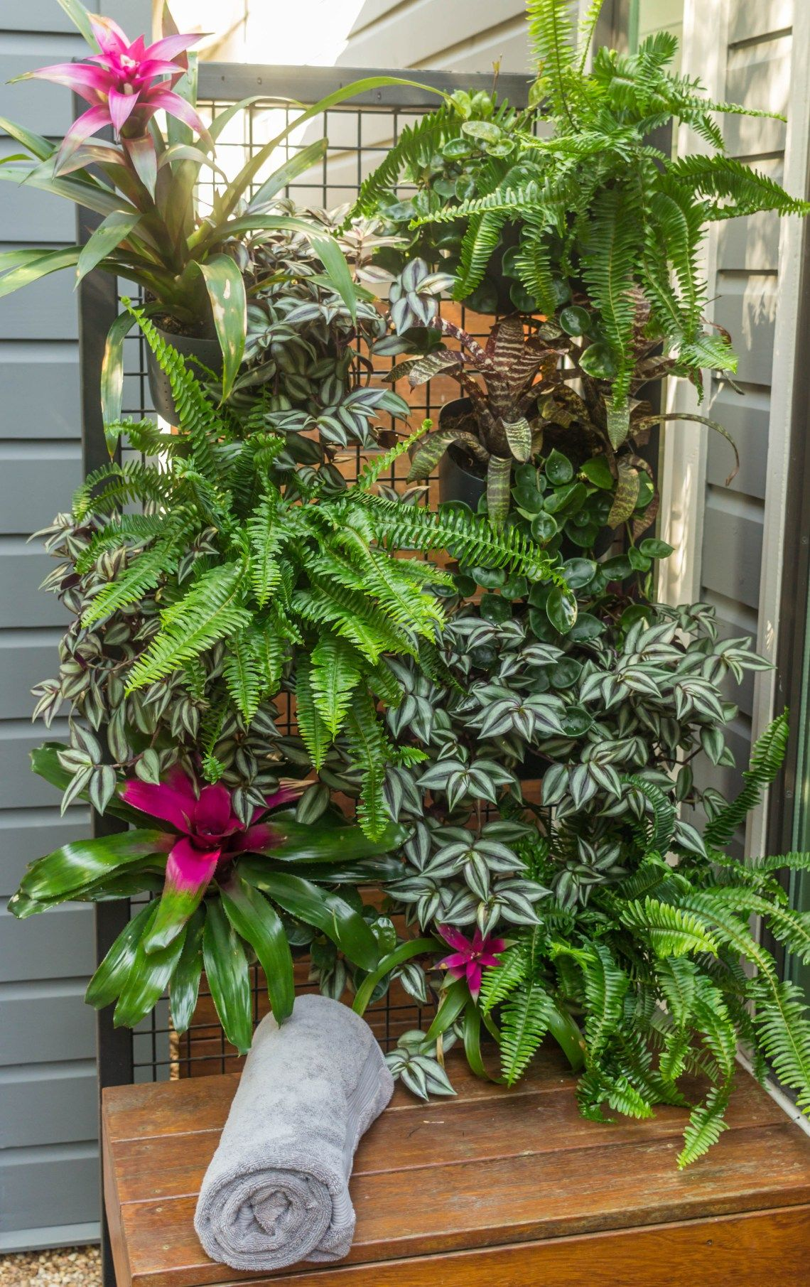 Go Vertical With A Living Wall