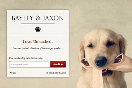 Bailey & Jaxon sign-up page | Web Design - Landing Page Examples ...