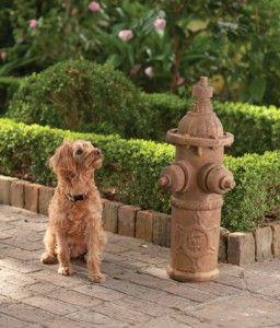 dogfriendlygardens6