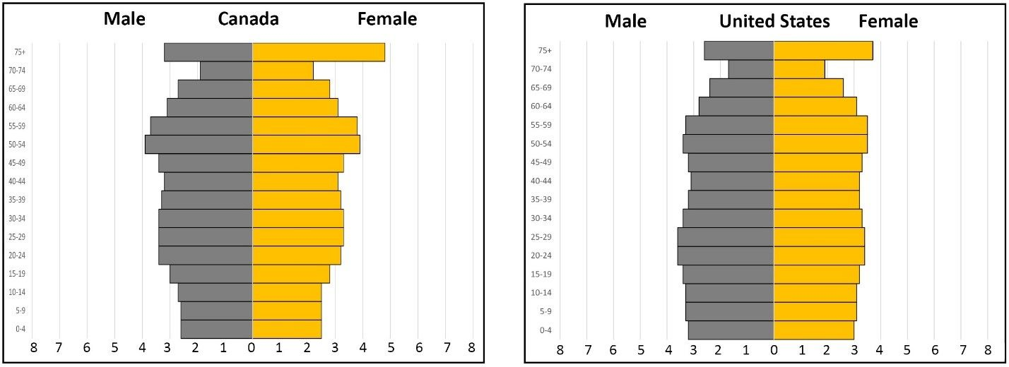 The Curious Case Of Two Population Pyramids Population Education Pyramids Case Curious