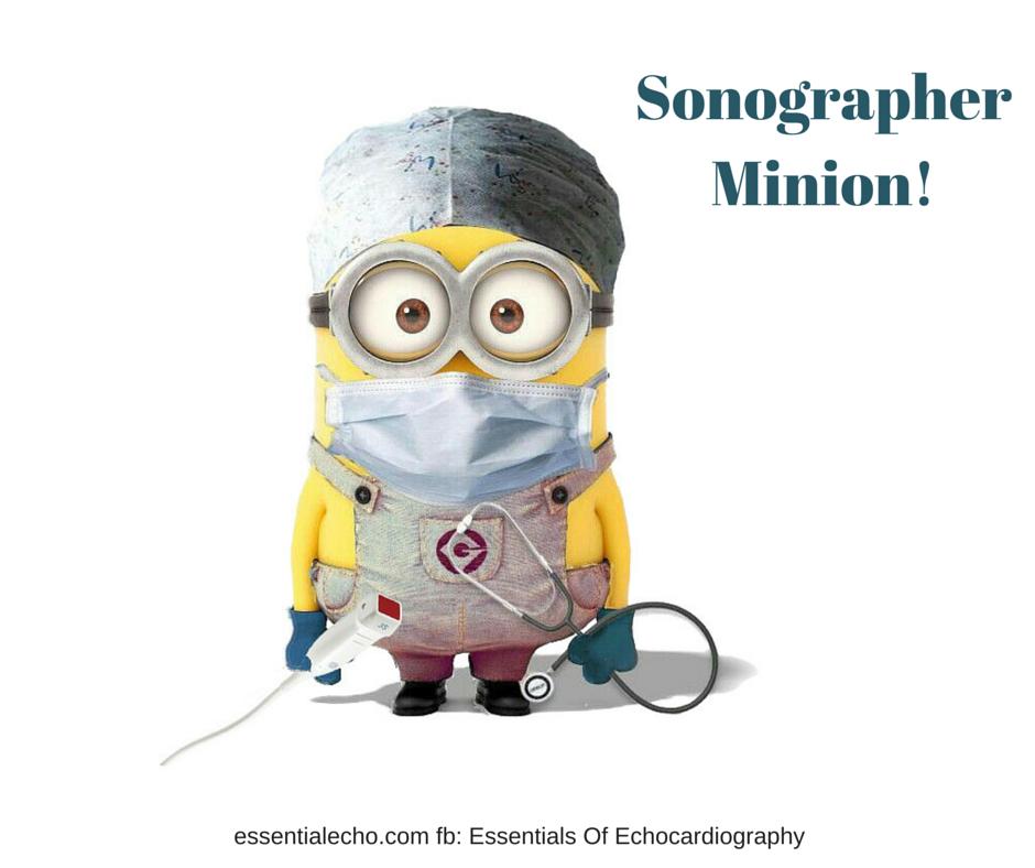 pin by kristy holman on work funny pinterest ultrasound cardiac