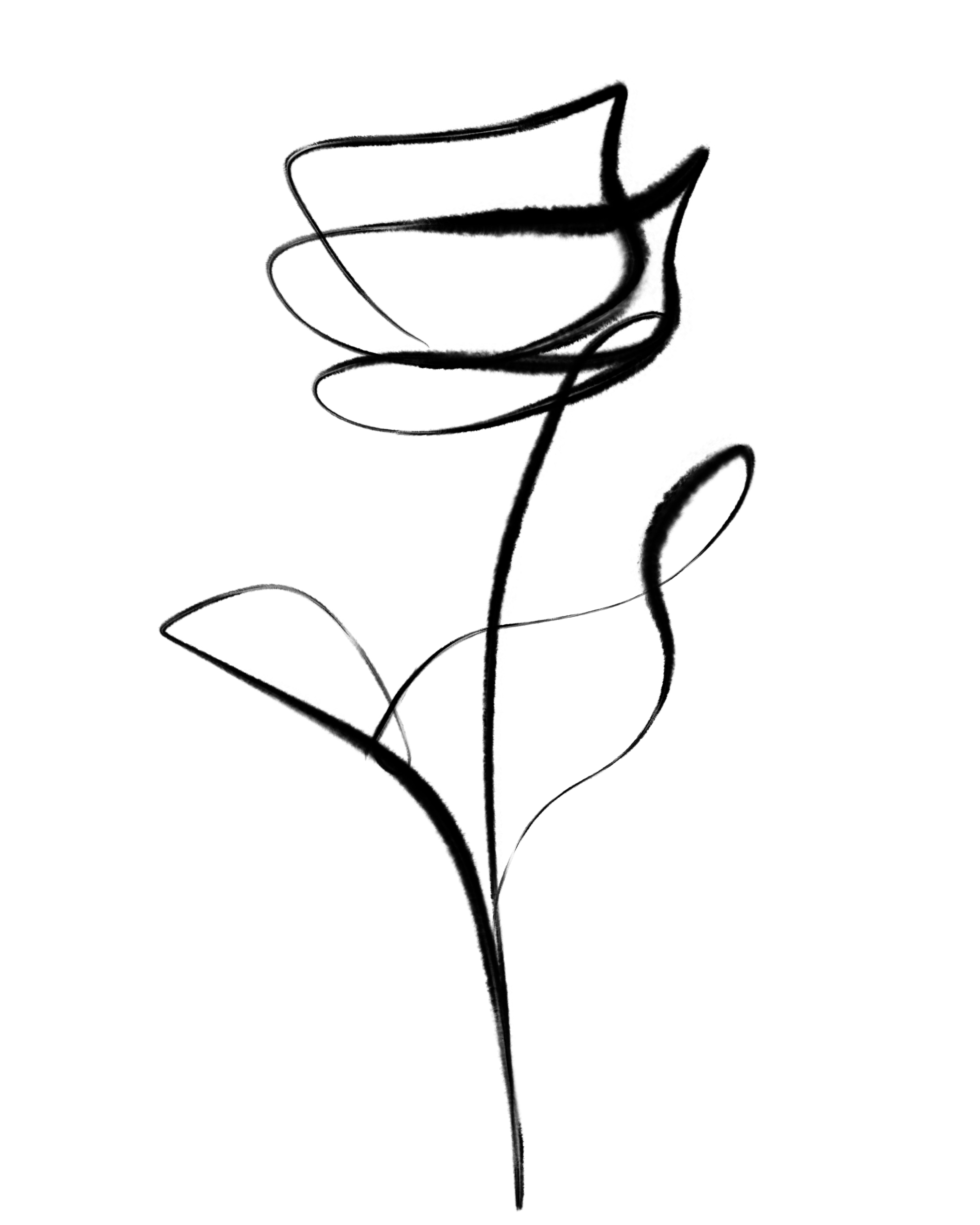 Botanical Rose Line Art Minimal Decor