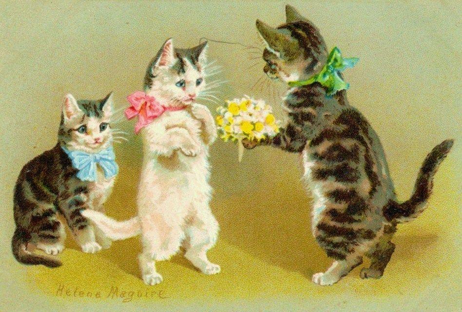 Vintage Cats With Images Cats Illustration Cat Art Vintage Cat