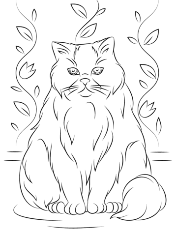 Himalayan Cat coloring page from Cats category Select from 24652