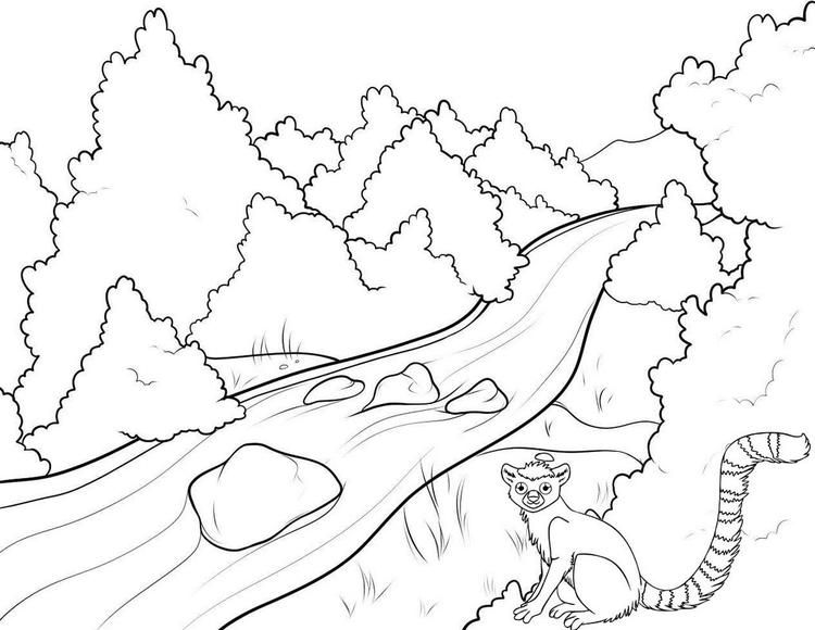 River And Animal Nature Coloring Page Coloring Pages Cinderella Coloring Pages Drawings