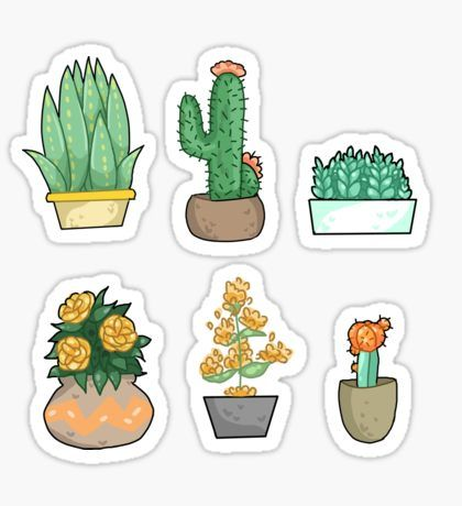 Cactus stickers plants planners and bullet journals