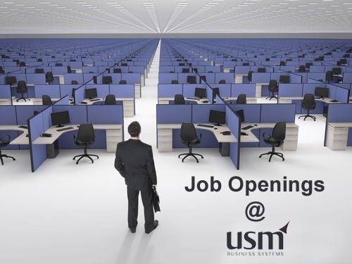wwwmsystems/careersphp?page\u003djob-detailid\u003d176 Job