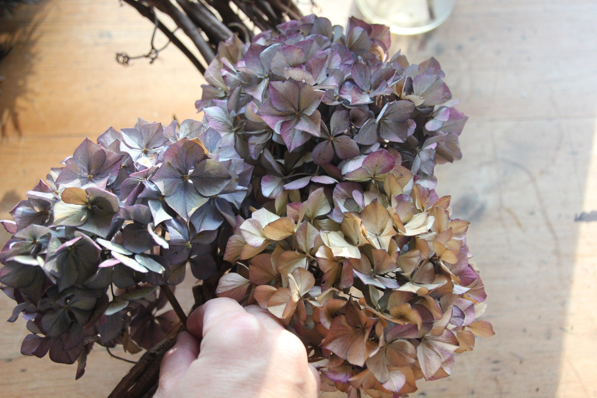 How To Dry Hydrangeas And Make A Dried Hydrangea Wreath A Country Girl S Life In 2020 Dried Hydrangeas Dried Flowers Dried Flowers Diy