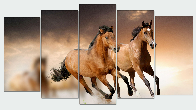 Pin von Canvas Rock auf composicion 5 cuadros   Pinterest