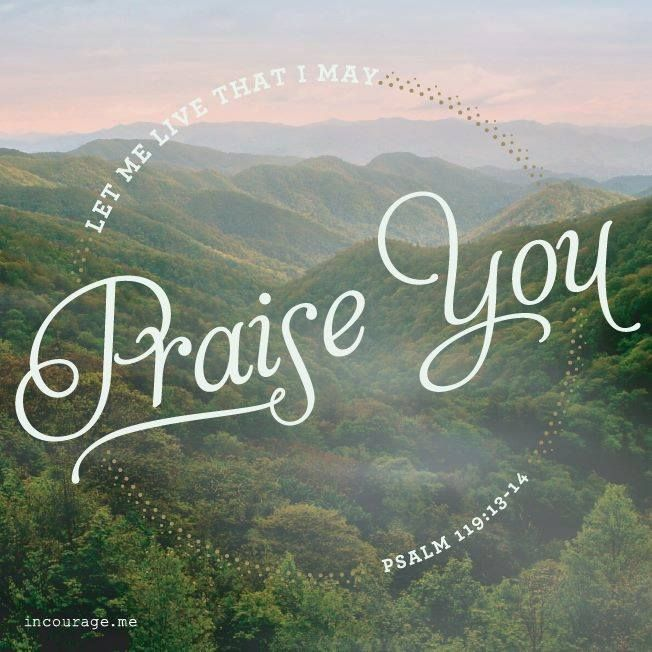 Ps 119:13-14
