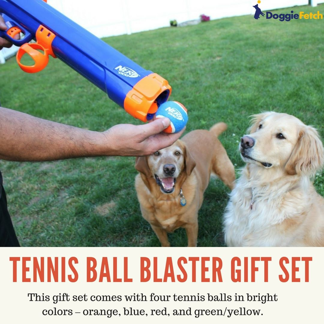 Nerf Dog Toys A 2018 Buyer S Guide Doggie Toys Gifts Dog