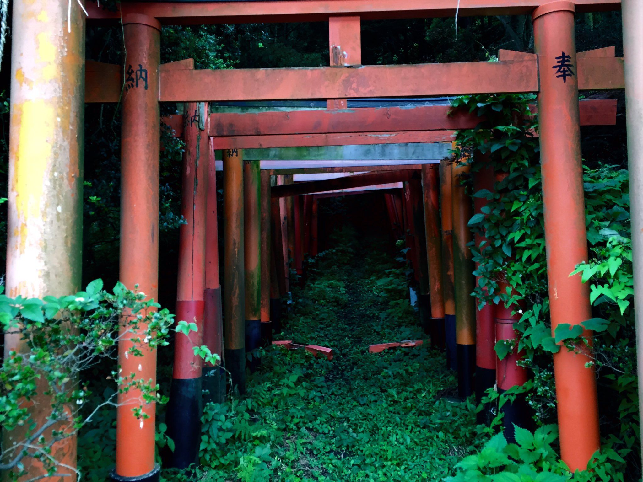 𓅪 On Twitter Japanese Shrine Yokosuka Japan Japan Temple